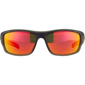 Alpina Testido Bril, grijs/transparant